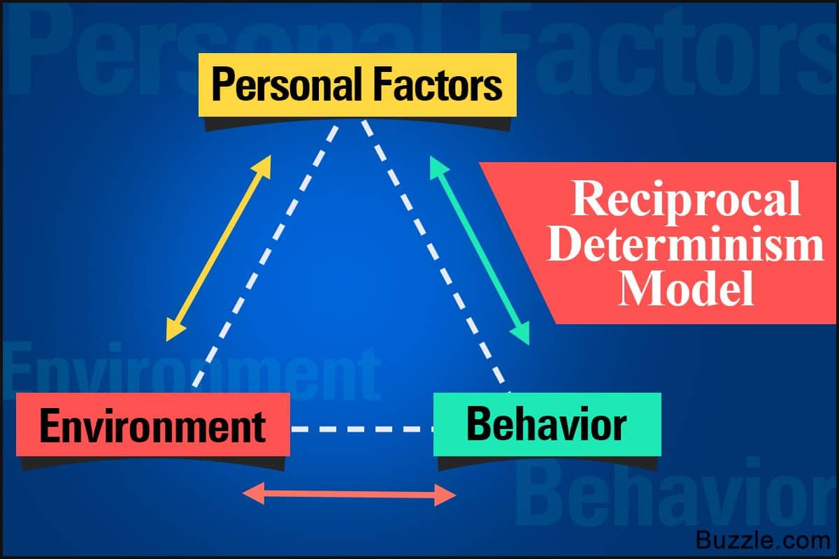 Image result for reciprocal determinism