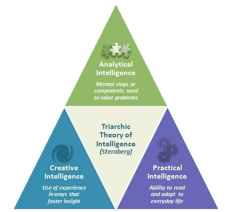 Image result for Triarchic theory of intelligence