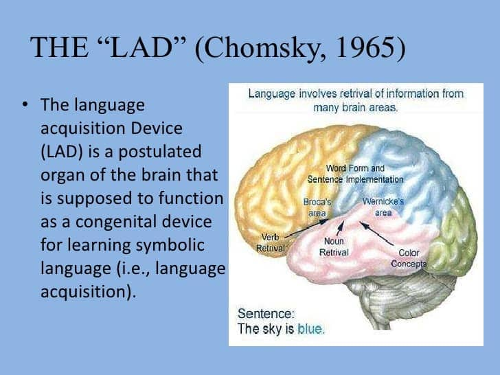 Image result for noam chomsky Language Acquisition Device